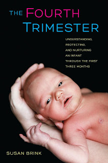 The Fourth Trimester by Susan Brink – Book Review and Giveaway