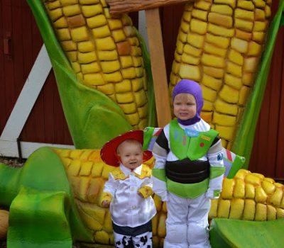 Anderson Farms 2013 Erie Colorado