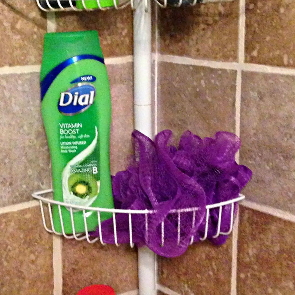 NEW Dial Vitamin Boost Body Wash