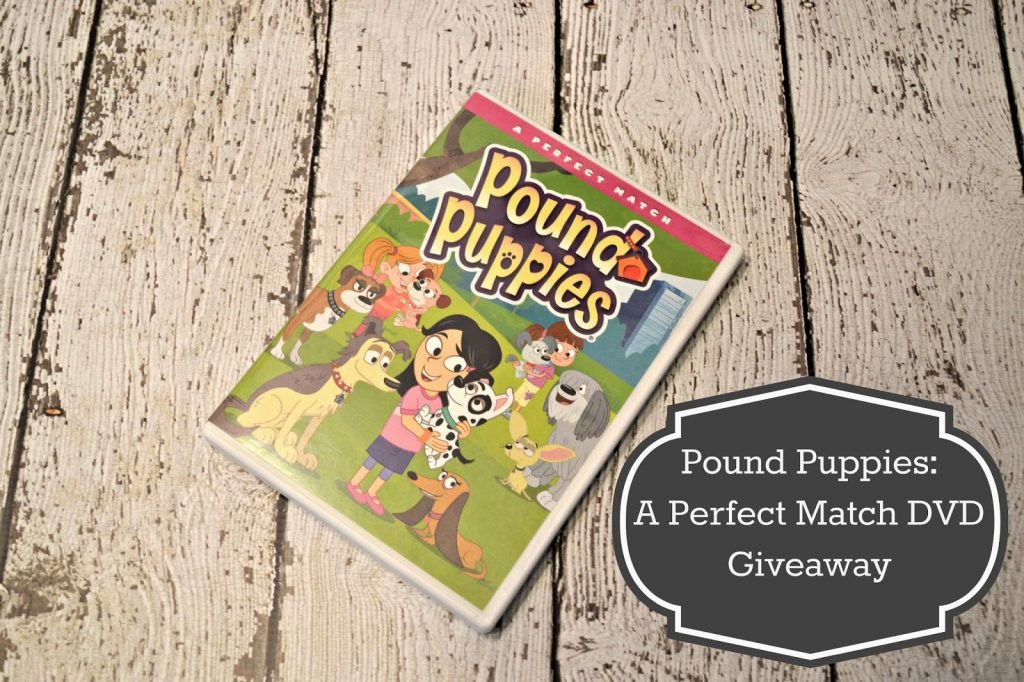 Pound Puppies: A Perfect Match DVD {Review & #Giveaway}