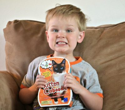 Kitten Caboodle™ Game Review and Giveaway