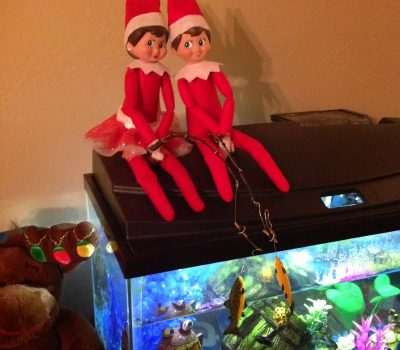 Elf on the Shelf – Easy Ideas For Two Elves