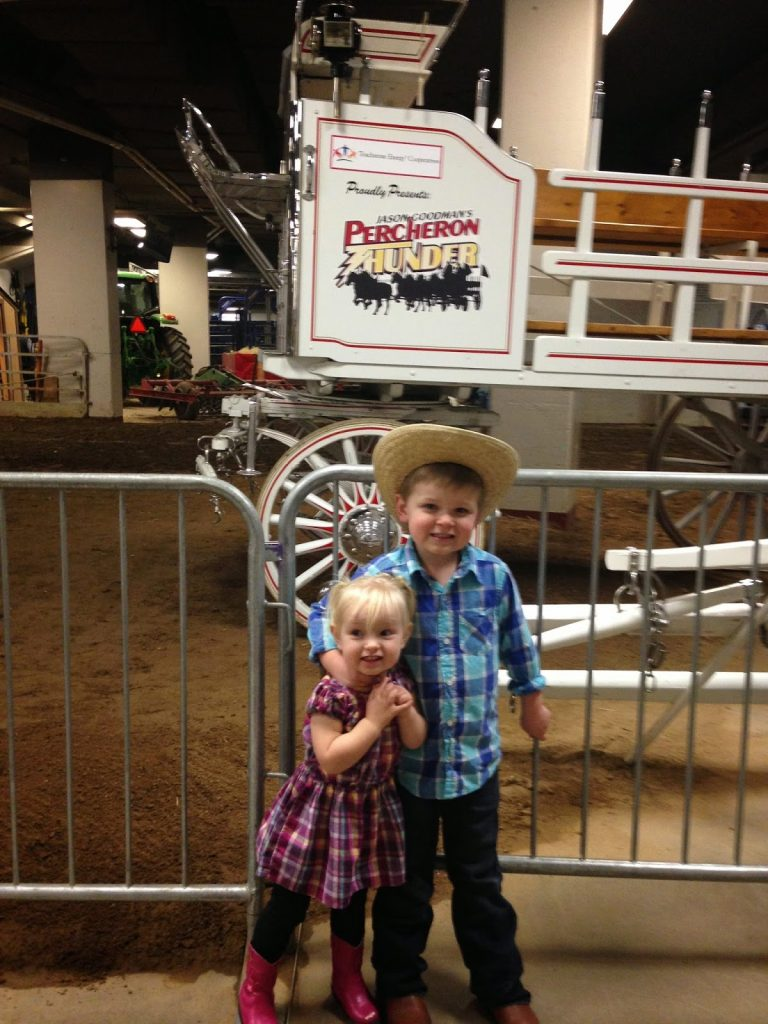 National Western Stock Show 2015 & Rodeo #NWSS2015.  Stock Show in Colorado.  National Western Stock Show Colorado.