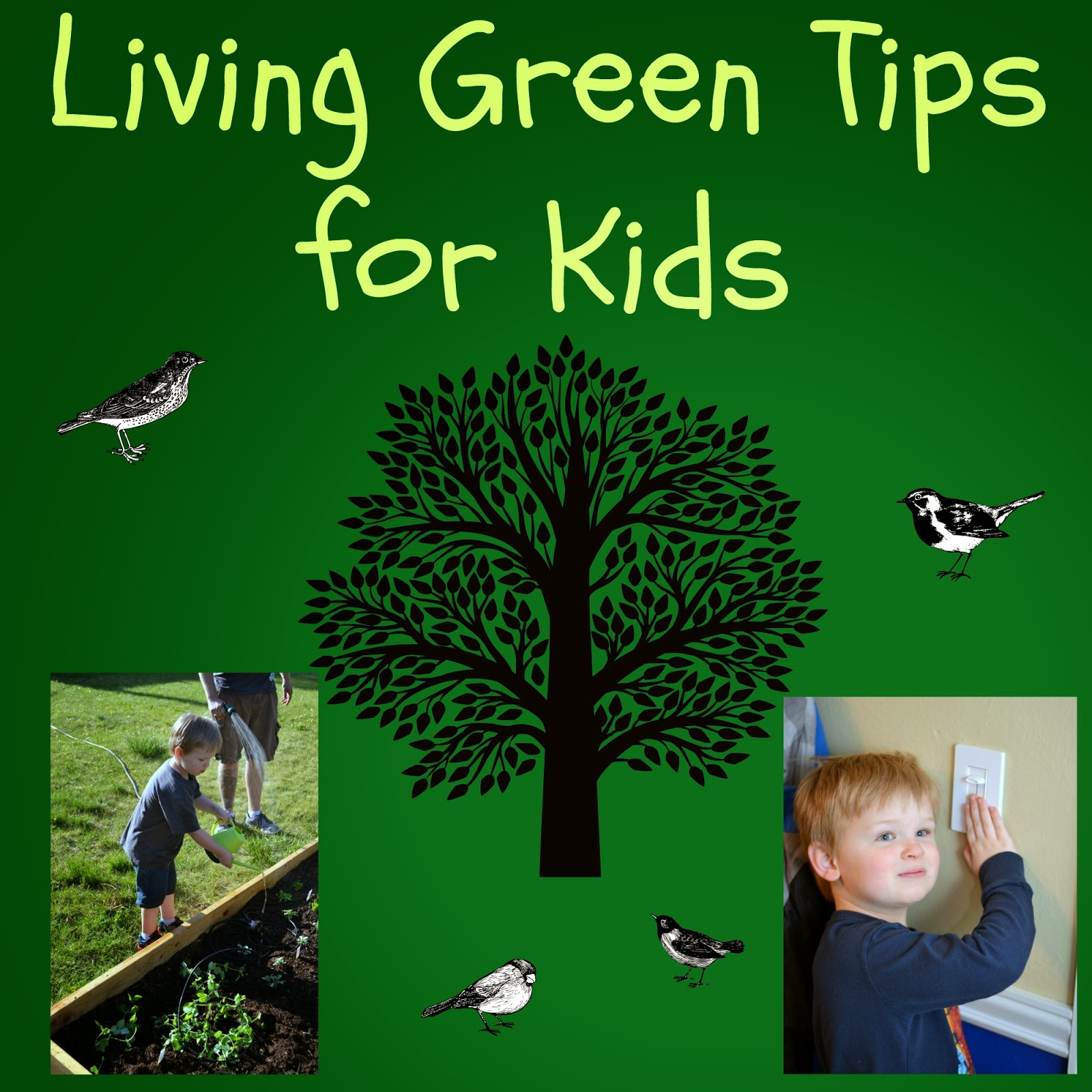 6 living green tips for kids building our story for Ideas for sustainable living
