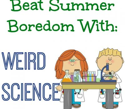 Beat Summer Boredom With Weird Science