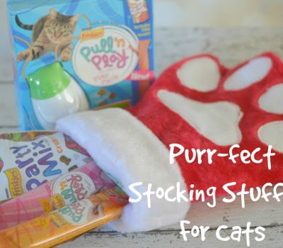 Cats Need Stocking Stuffers Too!  {Giveaway}