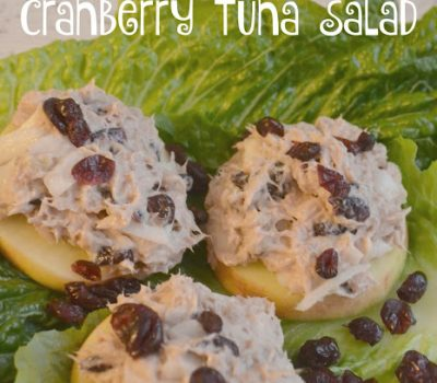 Apple Slices Topped with Cranberry Walnut Tuna Salad