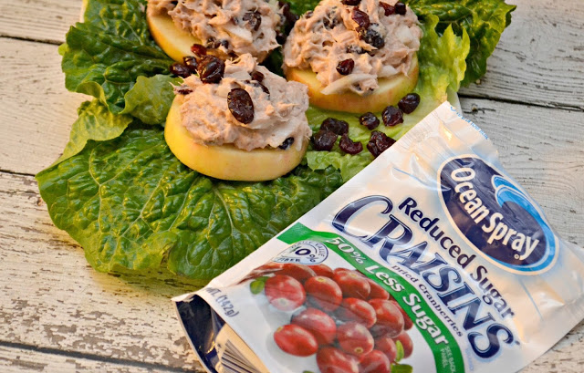 Apple Slices Topped with Cranberry Tuna Salad, easy tuna salad recipes, tuna salad recipes, cranberry tuna salad, tuna salad on apples, apples and tuna salad, Apple Slices Topped with Cranberry Walnut Tuna Salad, cranberry walnut tuna salad