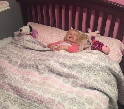 Big Girl Bed For Teagan
