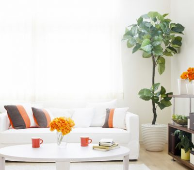 5 Things to Modernize Your Home