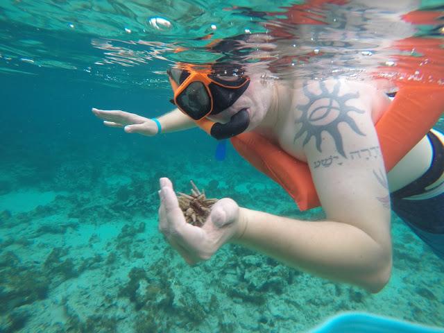 Snorkeling at Beaches Resorts, Beaches Resorts, Beaches Resorts and Spa Negril Jamaica, Negril Jamaica, things to do at Beaches Negril, Watersports at Beaches resorts
