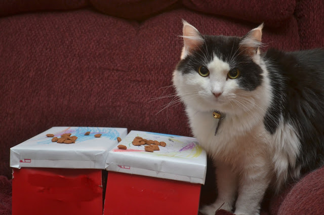Blessing Box for Cats - Animal Shelter Donations, Blessing boxes for cats, blessing boxes for animal shelters, what to donate to animal shelters, cats, cat treats, cat toys, donations for animal shelters