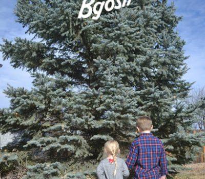 Holiday Stylin' with OshKosh B'gosh + Giveaway