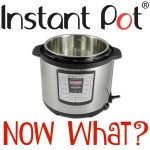 Instant Pot...so now what?