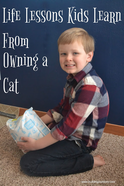 Life Lessons Kids Learn From Owning a Cat