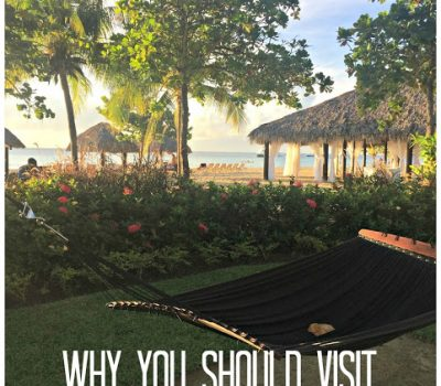 Why You Should Visit Jamaica On Your Next Trip