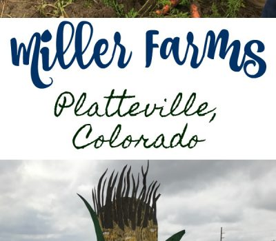 Miller Farms Field Trip
