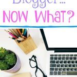 So You Are A Full Time Blogger...Now What?