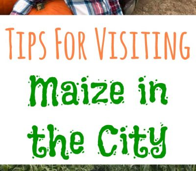 Tips For Visiting Maize in the City & Haunted Field of Screams