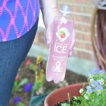 Let's Get Fizzy with Sparkling ICE Popsicles