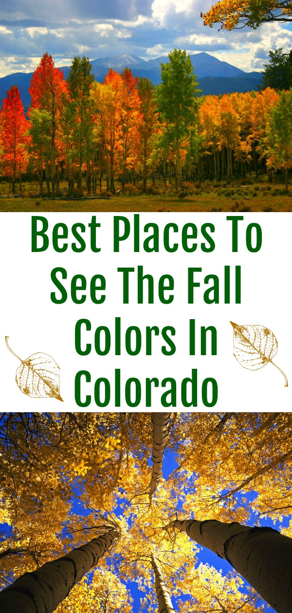 Best Places To See The Fall Colors In Colorado, fall colors in colorado, where to see autumn colors in colorado, day trips to see fall colors, when do you see fall colors in colorado, Colorado fall colors, Changing colors in Colorado