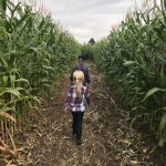 Maize in the City & Haunted Field of Screams - Colorado GIVEAWAY