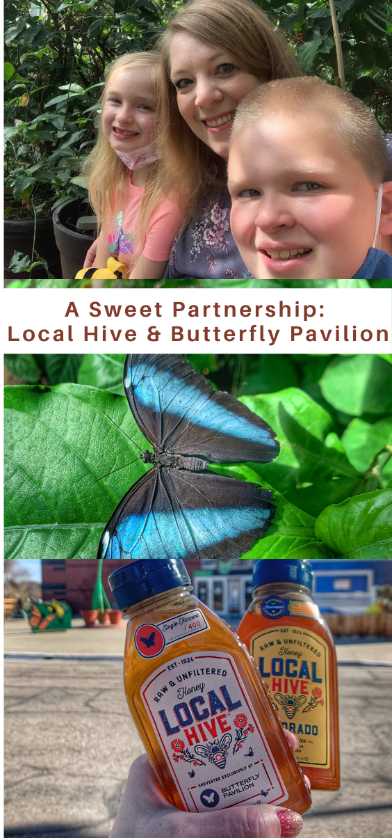 #ad #LocalHivePartner #ButterflyPavilion #giveaway How to teach your kids how to support pollinators like bees and butterflies! Butterfly Pavilion in Denver Colorado.